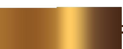 DancSport SA is a full member of the world DanceSport federation WDSF logo
